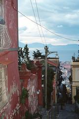 Napoli (platanes) Tags: italy zeiss italia napoli naples vesuvio portra planar contaxg2 vomero