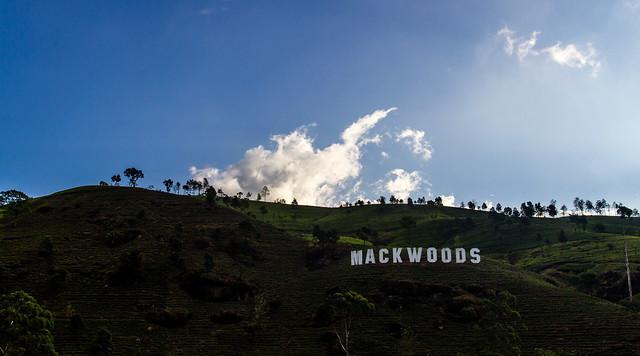 Mackwoods
