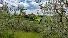 Between Olives (since 1960) Tags: italien sky italy house clouds nikon europa europe dorf village pflanzen himmel wolken haus blumen tuscany gebäude toskana d7000 plantsfowers