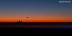 Night Trips (Normann Photography) Tags: blue sunset sea people orange seascape colors silhouette norway twilight fishing friendship no seagull company silence serenity moment patience stfold magiclight serenit nighttrips latenighttrip
