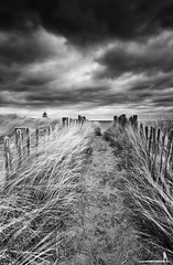 To The Beach (David Ball Landscape Photography) Tags: uk longexposure greatbritain travel sky blackandwhite storm nature monochrome clouds canon landscape outdoors photography mono coast blackwhite moody cloudy dunes fineart coastal tones northeast fineartphotography 2016 10stops leefilters cloudsstormssunsetssunrises davidballlandscapephotography