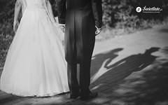 swietliste-fotografia-slubna-romantyczny-plener-Torun-cienie