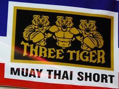 Chiang Mai (Muay Thai Boxing), Thailand (Jan-2016) 10-003 (MistyTree Adventures) Tags: thailand asia seasia text indoor advertisement chiangmai boxing muaythai thaiboxing panasoniclumix thapaeboxingstadium