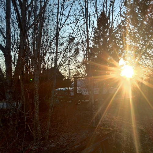 #россия #тосненскийрайон #ушаки #посёлок #вечер #природа #деревья #солнце #тишинаипокой #машина #весна2016 #12апреля #безфильтра #инста #russia #ushaki  #evening #nature #trees #sun #quite #car #spring2016 #april12 #nofilter #insta