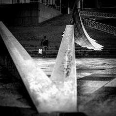 Fall prey (B-side) (tomabenz) Tags: street urban blackandwhite monochrome noiretblanc streetphotography streetview sonya7rm2 a7rm2
