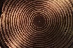 Cupola dell' Eremo di Montesiepi (Betti52) Tags: san italia cupola siena toscana abbazia galgano eremo montesiepi chiusdino