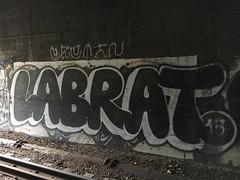 labrat (always_exploring) Tags: graffiti tunnel pnw labrat