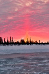 ABC_7629s (savillent) Tags: road travel trees sunset snow canada ice river landscape march spring northwest north nwt delta arctic mackenzie climate territories truckers inuvik 2016 tuktoyaktuk