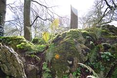mossy greens (Mr. Russell) Tags: ireland castle blarney mossy blarneycastle