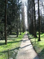 2008 03 Emilia Romagna - Parma - Sant'Agata - Casa Verdi - Il Parco_289 (Kapo Konga) Tags: italia emiliaromagna santagata