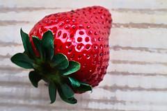 Strawberry (watercolor) (algimblett) Tags: red macro photoshop creative strawberries watercolour foodphotography