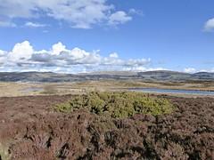 Mainland Scotland from Cumbrae (Wider World) Tags: sea cloud scotland clyde heather isle firth moorland lochan cumbrae