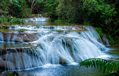 Tropical waterfall  (T.ye) Tags: tree de landscape waterfall oaxaca tropical todd ye huatulco  cascadas   magicas copalitilla