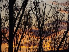 Sun (gittermasttyp2008) Tags: sunset sky sun skyline skyscraper deutschland abend scary sonnenuntergang sundown sommer energie himmel sunsets sunny sonnig sonne sonnenuntergnge strom schnheit strommasten stahl strommast stromleitung sendemast schn starkstrom selten spatziergang stahlmast stahlgittermast stromschlaufen