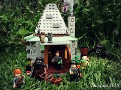 La cabaa de Hagrid (Linayum) Tags: toy toys lego harrypotter juguetes juguete linayum legoharrypotter lacabaadehagrid