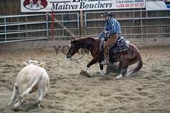 BJ1A3095 (yoann coin) Tags: en horse france western cutting bons equitation ccha chablais ncha charmot
