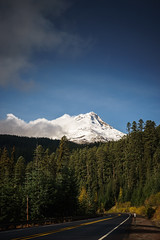 sunny side of the mountain (sebboh) Tags: road trees snow oregon forest landscape mthood sonya7 carlzeisscontaxg45mmf2planar zeissrokkorfrankenlens