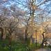 St. Nicholas Park, Manhattan