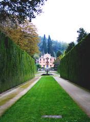 -The path- (margheritaputti) Tags: road verde green outside strada path sentiero aperto