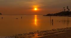 summer feeling (Robert Benatzky Photography) Tags: ocean sunset sky orange sun beach nature water beautiful strand thailand coast meer wasser sonnenuntergang outdoor natur himmel kohphangan ufer landschaft sonne kste schn totallythailand