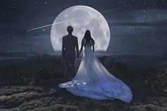 Threshold of Dreams (R. Keith Clontz) Tags: joey fullmoon fantasy weddingdress dreamscape brideandgroom starrynight conceptualart shootingstar craggygardens betsabe starrysky