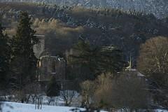 IMG_2096_web (Mebuecher) Tags: nature alsace promenade meb abbaye basrhin niedermunster