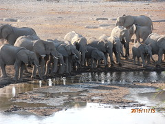 Africa 2015 722 (Absolute Africa 17/09/2015 Overlanding Tour) Tags: africa2015