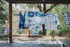 drying time () Tags: indigo craft melbourne workshop dye dyeing shibori sonya7  sel35f28z