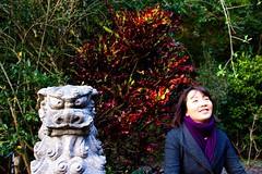 IMG_6521 (jonward6000) Tags: japan amami amamioshima