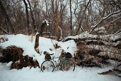 (markreimer) Tags: winter snow ice freezing mini manitoba atlantis touring overnight rivendell wintercamping winterbiking bikecamping bikepacking s24o