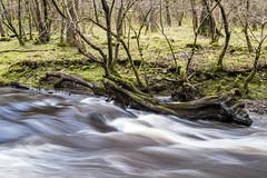 Afon Nedd (--Kei--) Tags: water wales waterfall nikon cymru breconbeacons 55mm waterfalls f28 sgwd micronikkor d810 55mmf28 afnikkor afonnedd afmicronikkor55mmf28 pontmelin