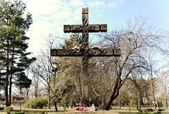 Lakitelek (rozsaphotography) Tags: park nikon hungary kit mm 18 55 vr magyarorszg lakitelek d3300