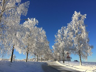 iphone6+ Back to winter and -20C. Oslo, Norway