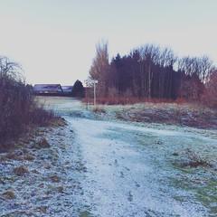 Snowy Walk to Class (St. Andrews, Scotland) (iseeyoupaintedyoursoul) Tags: standrew scottishwalk standrewscotland scotlandschool scotlandsnow walktoclassscotland standrewssnow