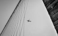 geometry of bridge (Majka Kmecova) Tags: nyc bridge light blackandwhite bw usa ny newyork lines photography us photo nikon outdoor geometry manhattan unitedstatesofamerica brooklynbridge cityphotography majkakmecova nikond5000