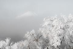 Mt.Fuji (Masayuki Nozaki) Tags: mountain japan landscape sony fujisan  mtfuji snowscape ilce7rm2 7r2