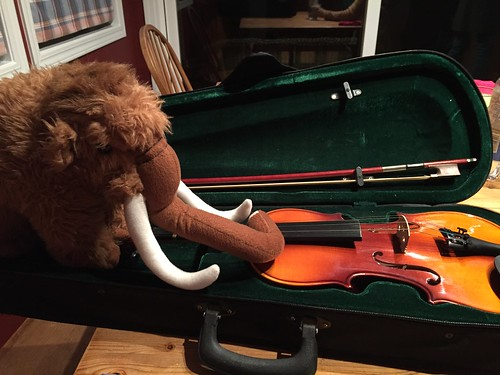 Jean-Claude is Ready to Learn Some Fiddle