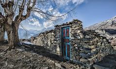 House ruin in Muktinath (Nicolas Bourque) Tags: travel nepal house mountains tree architecture trekking hiking stones sony ruin explore himalaya annapurna discover muktinath a6000