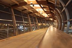 Solitary at Walking Bridge (Amjad Ahmed) Tags: longexposure night bahrain solitude nopeople lighttrails solitary