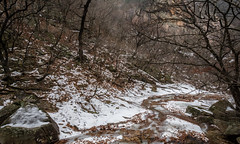 Frozen Stream (Skagos26) Tags: park winter mountain snow ice water rain weather fog frozen nikon rocks asia cloudy foggy korea rainy southkorea seoraksan fiver seoraksannationalpark d7100 1024mm