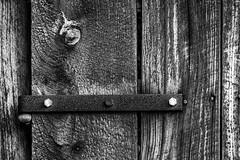 barnboard (TiredTim) Tags: blackandwhite artistic 2015 barnboard