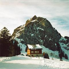 grosser mythen (thomasw.) Tags: travel schnee snow 120 mamiya analog schweiz switzerland europa europe cross suisse suiza mf crossed schwyz schweiztravel