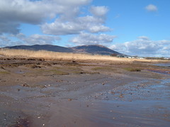 criffel beach (ztephen) Tags: beach scotland criffel galloway southerness