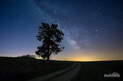 Follow the Light (kevin-palmer) Tags: road morning blue sky mars tree green grass night dark stars early illinois spring twilight path sagittarius clear galaxy astrophotography april astronomy saturn comet starry gravel milkyway fultoncounty ipava astrometrydotnet:status=failed pentaxk5 samyang10mmf28 252plinear astrometrydotnet:id=nova1519745