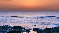 Sunrise (khalid almasoud) Tags: morning sea sky birds sunrise sony الكويت photographyrocks dscrx100m2 sonya5100