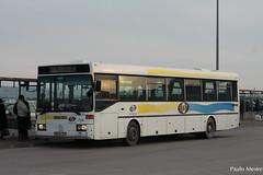 Mercedes Benz O407 TST 228, Terminal do Barreiro, 27 de Janeiro de 2016 (Paulo Mestre) Tags: bus portugal mercedes benz autobus tst 228 barreiro autocar autocarro o407