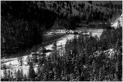 Lingua di neve - Tongue of snow (Matteo Bersani) Tags: houses winter snow alps woods wildlife case neve inverno alpi ayas bosco valdaosta a58 montagnamountain baite sonyalphaitalia bwbwbnblackwhitebianconero