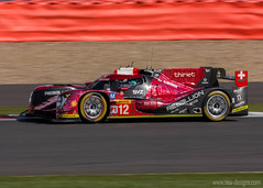 "WEC Silverstone 2016 (31) • <a style=""font-size:0.8em;"" href=""http://www.flickr.com/photos/139356786@N05/25936345973/"" target=""_blank"">View on Flickr</a>"