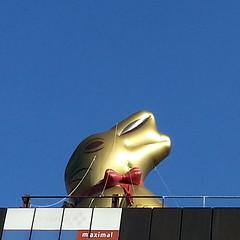 aus gegebenem Anlass (DREASAN) Tags: blue gold words skies redribbon dreasanpics ostern2016 schokohaseaufparkdeck easterbunnyinchains