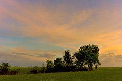 Early Sunrise (thefisch1) Tags: morning sky orange cloud tree green nikon open horizon hills pasture kansas prairie flint nikor sunrie precuror